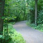 Is Your Path Paved?
